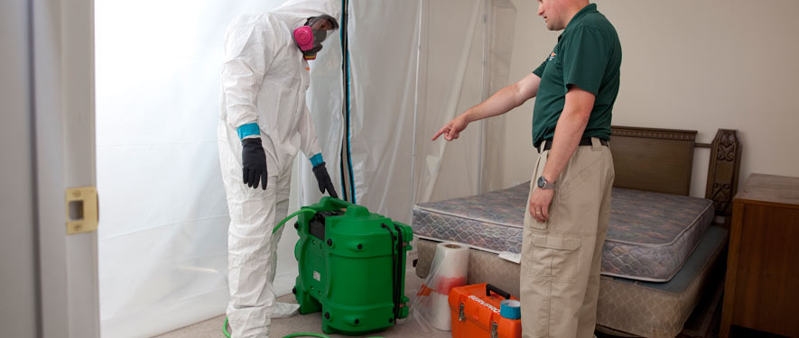 Raleigh, NC mold removal process